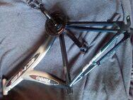 Mountainbike Rahmen Y-Frame Aluminium - Nürnberg