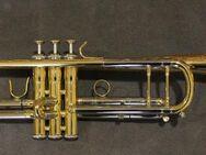 Jupiter Tribune 1000R Trompete in B inkl. Leichtkoffer