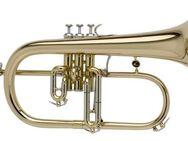 Antoine Courtois Paris B - Flügelhorn mit Trigger. Top - Auswahl