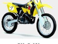 Suzuki RM - Z 250 Wartungsanleitung - Bochum