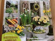 Garten Flora  März 2015 - Gladbeck