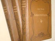 mehrere antiquarische Bücher ab 1886 - Spaichingen Zentrum