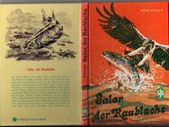 Kurt Knaak - Salar, der Raublachs Lebensgeschichte eines Lachses - Fischerei historisch - Nürnberg