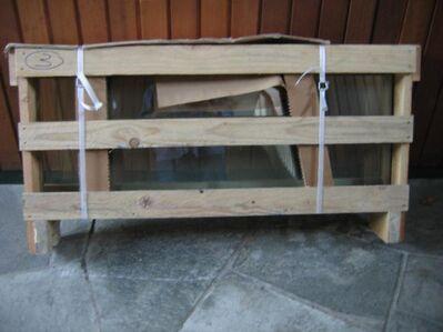Glastablar für Regal / Gondel 4 Stck. in 985 x 400 mm *NEU* - Celle