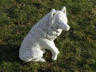 Wolf sitzend Betonfigur 68 cm hoch NEU - Hergisdorf