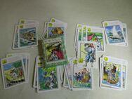 DDR Kartenspiel Robinson / Lernquartett ab 10 J., Pössneck Verlag 1982 - Zeuthen