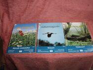 Berlin-Brandenburger Naturmagazin, 3 Hefte aus dem 15. Jahrgang 2001 - Bad Belzig