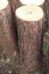 Hackklotz, Hauklotz um sein Brennholz zu hacken