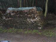 Brennholz: trockenes Ofenholz gemischt mit 25cm Länge, 22,4 RM Haufen - Bad Belzig