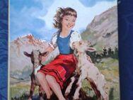 Heidi  Kinderbuch ab 8 Jahre - Kassel Brasselsberg