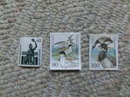 Briefmarken NEU/ Zwergseeschwalbe/Ringelgans/ Bavaria/ in DM - Duisburg