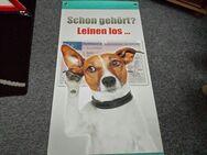 Werbeplakat aus Kunststoff. Fahrschulwerbung - Kassel Brasselsberg