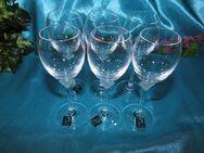 MARC AUREL 6 Stk. Schnaps - Kelche Gläser Vongola, NACHTMANN / Glas, Neu - Zeuthen