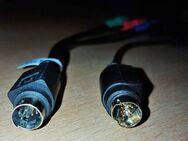 7-Pin S-Video zu HDTV/3 RCA RGB (rot,blau,Grün) Component Video - Verden (Aller)