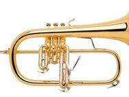 Bach Stradivarius Profiklasse Flügelhorn 183G. NEUWARE