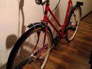 """Oldtimer Fahrrad, 26"""" Vintage Damenrad in rot - Nürnberg"""