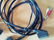 1 x Scart Stecker + 2 x Cinch Kabel - Verden (Aller) Zentrum