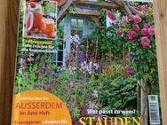 Garten Flora  Juni 2015 - Gladbeck