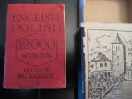 Liliput-Wörterbuch NR. 79 Englisch Polnisch 12000 Wörter - Moers