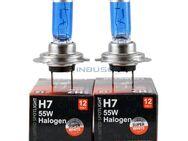 H7 Halogenlampen mit Xenoneffekt, 12V, 55W, SW - Berlin