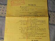 Antiker Rentenbescheid / Invalidenrente 1916 / Kriegsverletzung 1. Weltkrieg - Zeuthen