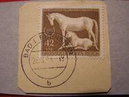 DR-Galopprennen,28.08.1944,  Mi:Nr.899 ,Lot 408