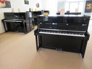 Fridolin SCHIMMEL Klaviere F 116 T und F 121 T jetzt neu bei uns! - Nideggen