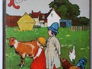Plauderstündchen. Eine Festgabe zur Unterhaltung und Belehrung für Knaben und Mädchen. Helene Binder, um 1910 - Königsbach-Stein