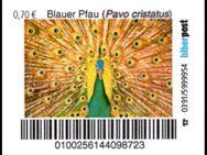 """Biberpost: """"Vögel: Blauer Pfau"""", Satz, postfrisch - Brandenburg (Havel)"""